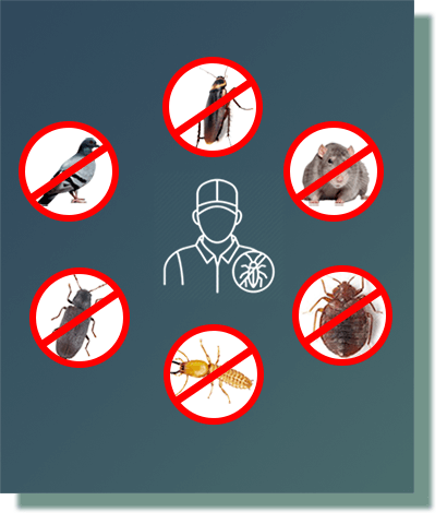 sanitizer pest control services in ahmedabad